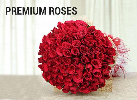 premium-roses-mob-17-feb-2019.jpg