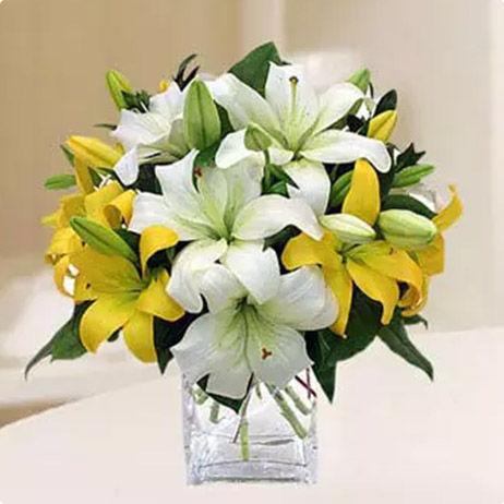 Online Lilies Delivery Dubai