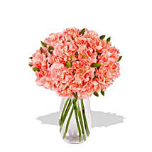 Pink Carnation: Just Because Flowers to Australia