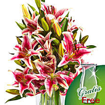 10 pink Stargazer Lilies in a bunch: I Am Sorry Flowers to Germany