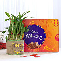 2 Layer Lucky Bamboo In Glass Vase With Cadbury Celebrations: Send Plants n Chocolates
