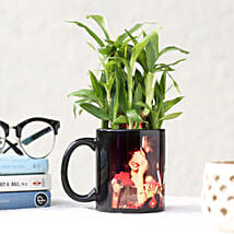 Bamboo Plant in Black Picture Mug: Send Plants for Birthday
