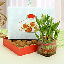 Besan Laddoo with Luck: Order Plants n Sweets