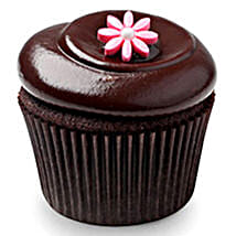 Chocolate Squared Cupcakes: Send Cup Cakes to Noida