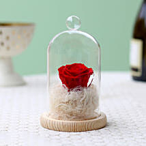 Classic- Forever Red Rose In Glass Dome: