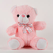 Cute Pink Sitting Teddy Bear: Birthday Gifts for Kids