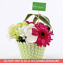Exotic Basket Of Flowers: independence Day Flowers