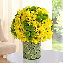 Fresh Daisy Arrangement: Independence Day Gifts
