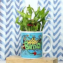 Healthy Celebration: Lucky Bamboo for Birthday