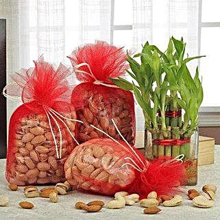 Love For Combo: Spiritual Gifts for Bhai Dooj