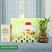 Lucky Bamboo Rakhi Love: Rakhi With Sweets Surat