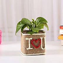 Money Plant In Jute Wrapped I Love You Vase: Propose Day Gifts