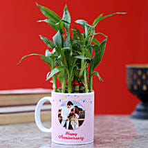 Personalised Anniversary Wishes Bamboo Plant: Send Plants for Anniversary