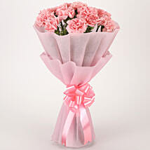 Pretty Pink Carnations Bouquet: