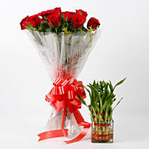 Red Roses & Two Layer Bamboo Plant Combo: