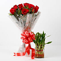 Red Roses & Two Layer Lucky Bamboo Combo: Send Flowers to Kiccha