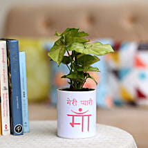 Syngonium Plant In Meri Pyaari Maa Mug: Air Purifying Plants