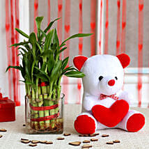 Two Layer Bamboo Plant & Red Heart Teddy Bear Combo: Plants for anniversary