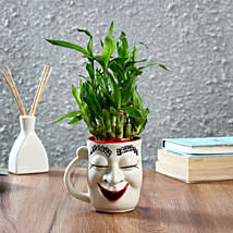 Two Layer Bamboo With Halloween Ceramic Pot: Good Luck Plants