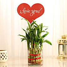 Two Layer Lucky Bamboo With I Love You Tag: Send Plants to Kolkata