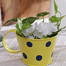 Yellow Polka Planter: Pots and Planters