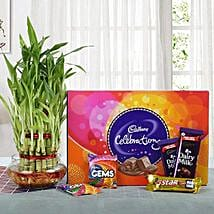 Yummy Chocolates N Three Layer Bamboo Plant: Diwali Plants