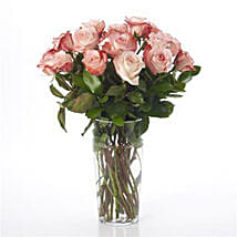 Elegant Powder Pink Roses: Romantic Gifts to Nz