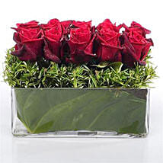 Heaven of Red Roses: Flower Arrangements in New Zealand