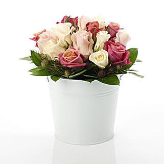 Pink Rose Nestle: Flower Arrangements in New Zealand