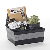 Succulent N More: Christmas Gifts Delivery In New Zealand