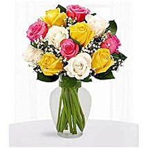 12 Multi Color Roses: Send Anniversary Gifts To Saudi Arabia