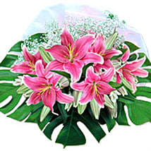 Pink Champagne sing: Lilies in Singapore