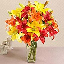 California Mixed Asiatic Lilies: Send Thank You Gifts to USA