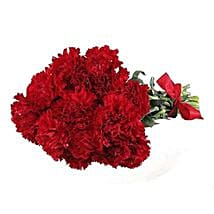 Red Carnations: Flower Delivery in USA